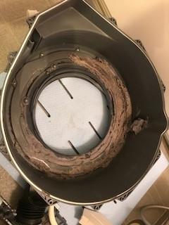 ドラム式洗濯機の内側は?